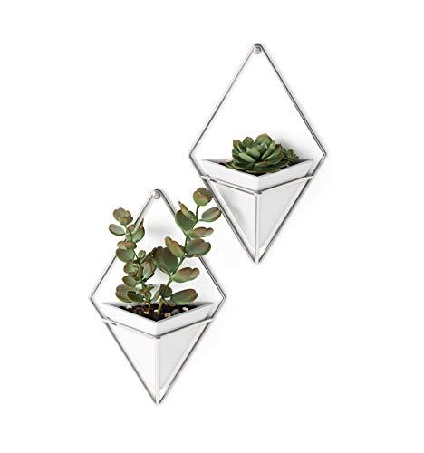 Umbra Trigg Wandvase & Geometrische Deko - Übertopf Für Zimmerpflanzen, Sukkulenten, Luftpflanzen, Kakteen, Kunstpflanzen und Mehr, Weiss/Nickel, 2er-Set,...