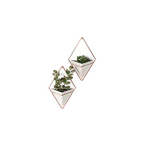 Umbra Trigg Wandvase & Geometrische Deko – Übertopf Für Zimmerpflanzen, Sukkulenten, Luftpflanzen, Kakteen, Kunstpflanzen und Mehr, Metall, Beton/Kupfer,...