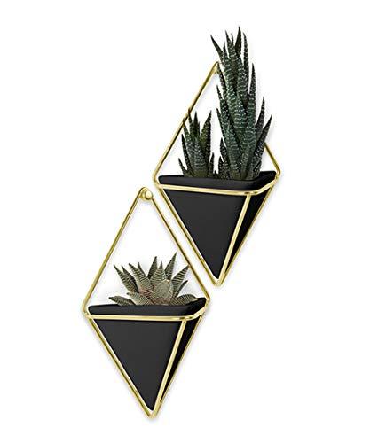 Umbra Trigg Wandvase & Geometrische Deko – Übertopf Für Zimmerpflanzen, Sukkulenten, Luftpflanzen, Kakteen, Kunstpflanzen und Mehr, 2er-Set, Klein