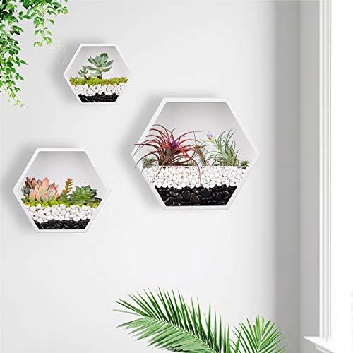 KNIKGLASS 3 Stück/Set Hexagon Wandvasen Deko Übertopf für Zimmerpflanzen Sukkulenten Luftpflanzen Kakteen Kunstpflanzen und Mehr, Metall (Weiß)