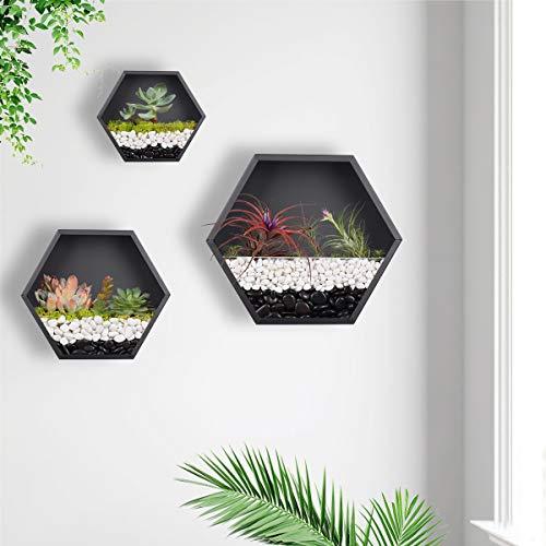 KNIKGLASS 3 Stück/Set Hexagon Wandvasen Deko Übertopf für Zimmerpflanzen Sukkulenten Luftpflanzen Kakteen Kunstpflanzen und Mehr, Metall (Schwarz)