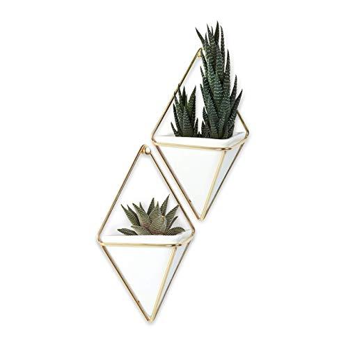 Umbra Trigg Wandvase & Geometrische Deko – Übertopf Für Zimmerpflanzen, Sukkulenten, Luftpflanzen, Kakteen, Kunstpflanzen und Mehr, Keramik/Metall,...