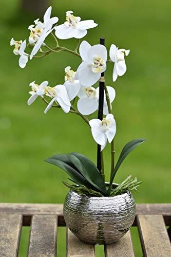 FIDEO Orchidee Kunstpflanze Phalaenopsis Creme weiß Höhe 30cm Keramiktopf Silber