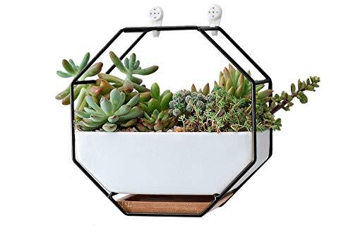 Ivolador Wandvasen Geometrische Keramik Sukkulenten Töpfe Blumentopf Planze für Sukkulenten Zimmerplanze
