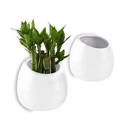T4U 10cm Keramik Wandampel Weiß 2er-Set, Klein Wandmotage Pflanzgefäß Hängende Blumenvase für Zimmerpflanzen