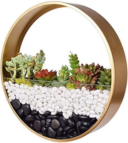 Ecosides Rund Metall Wand Blumentöpfe,Transparent Glas Pflanzgefäße Kunst Wandvase Von Blumen Bonsai Succulents Kräuter Farn Air Plant Töpfe Mit Creative...