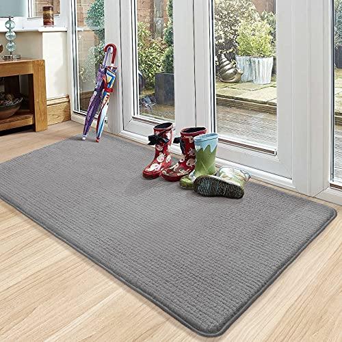 Color&Geometry Fußmatte Innen 90 x 150 cm Fußmatte Waschbar Schmutzfangmatte rutschfest, Türmatte Innen Teppich für Eingang, Patio, Flur, Garten, Innen und...