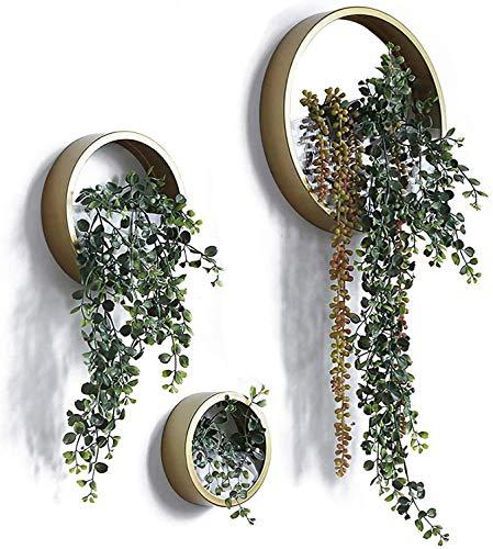 Ecosides 3 Stück Rund Metall Glas Wandvasen,Wand Terrarium,Wand Blumentopf AufhäNgen,Wand Pflanzen,Wandhalterung Blumentopf,Wand Pflanzgefäß, Wandbehang...