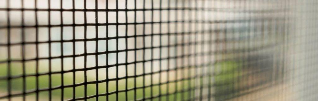 Insektenschutzgitter reinigen - Tipps für den klaren Durchblick