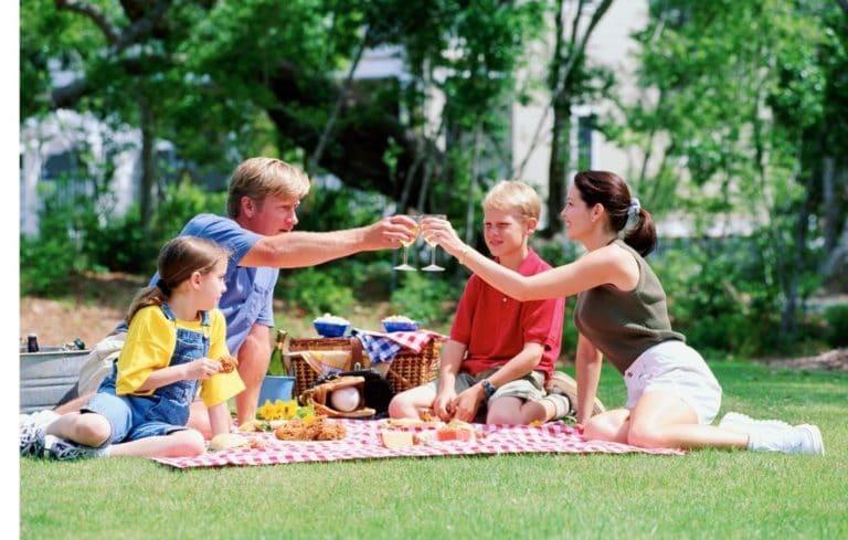 Picknickkorb: Auszeit im Grünen