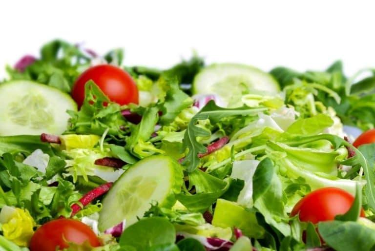 Frischer Salat aus der Salatschleuder